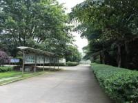 四川航天技师汽车学院有哪些专业