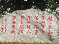 重庆立信职业汽车教育中心2019年招生录取分数线