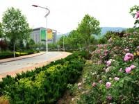 山东商业汽车职业技术学院网站网址