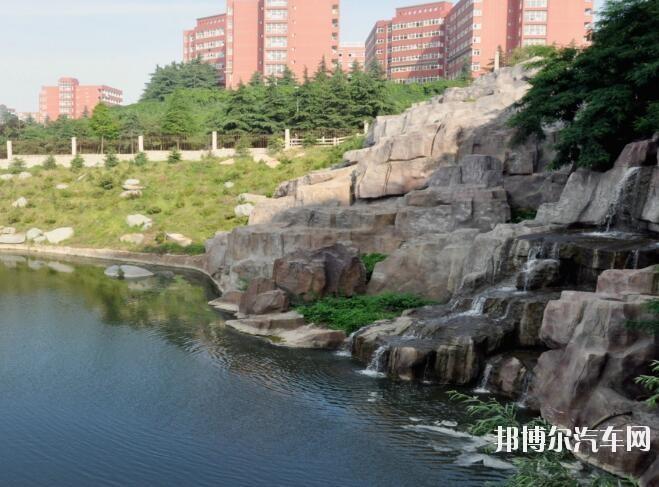 青岛滨海汽车学院招生办联系电话