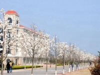 青岛港湾汽车职业技术学院招生办联系电话