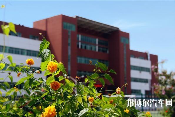 石家庄经济汽车职业学院网站网址