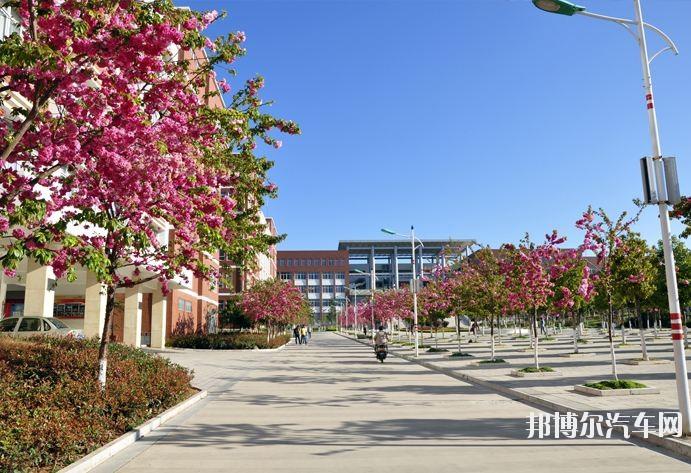 云南经济管理汽车学院2019年报名条件、招生要求、招生对象