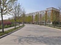 鹤壁汽车工程职业学院2019年排名