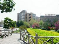 三门峡职业技术汽车学院2019年招生计划