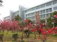 宿州职业技术汽车学院2020年招生简章