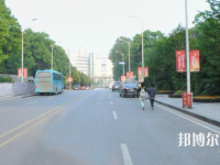 中南林业科技汽车大学2020年有哪些专业